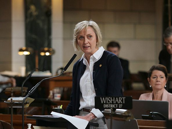 Sen. Lynne Walz